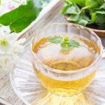 緑茶やハーブティーで心身の疲れにホッと一息を お茶にはストレス緩和に効果あり